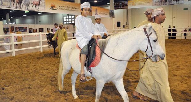 اليوم.. انطلاق المعرض الدولي للخيل والإبل والتراث (أصايل عمانية) بحلته الجديدة