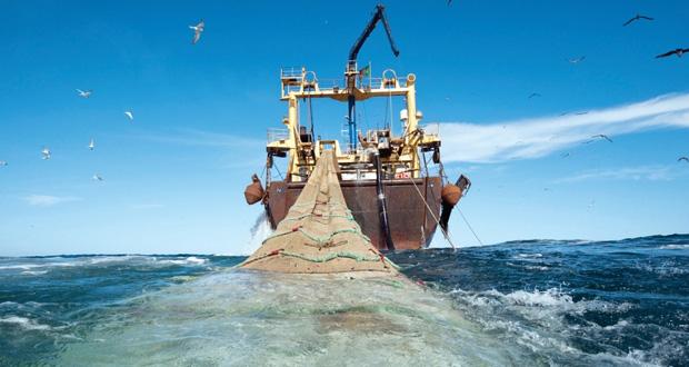 الفاو : مطلوب نهج جديد للتعامل مع الموارد البحرية في خدمة الأمن الغذائي العالمي وتعزيز التنمية المستدامة