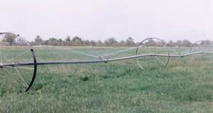 (الزراعة والثروة السمكية) تسعى لتشجيع تبني التقنيات الحديثة في زراعة المحاصيل التي تمثل ميزة نسبية