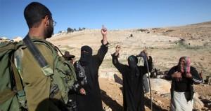 مستوطنون مسلحون يهاجمون بلدة بيت أمر بالخليل وإصابة فلسطينيين إثرالاعتداء عليهم