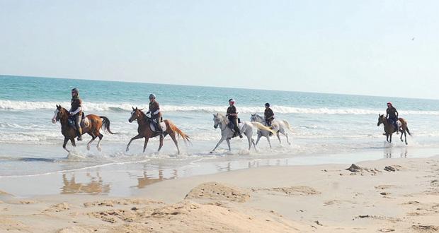 الصافنات والعاديات في صدارة تجوال عمان