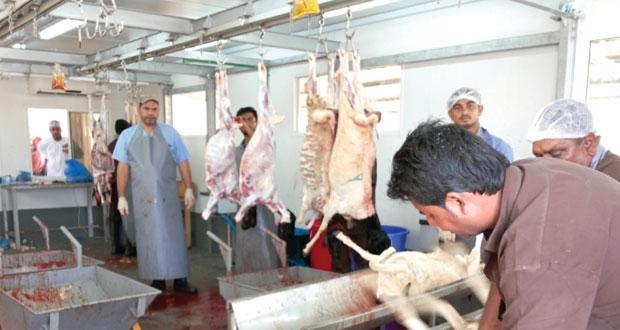 اليوم.. بلدية مسقط تستأنف عمل المسلخ المؤقت بالمعبيلة