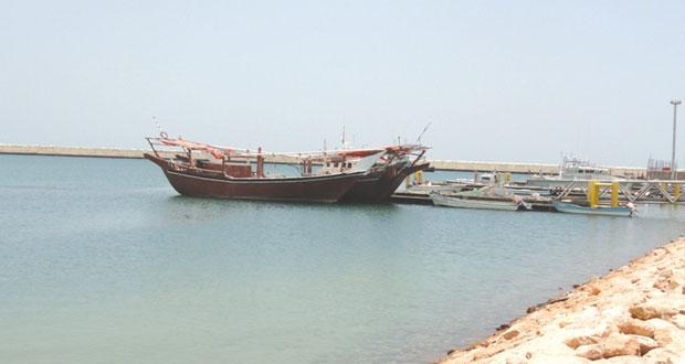 الساجواني: الترخيص لـ100 سفينة صيد ساحلية حديثة
