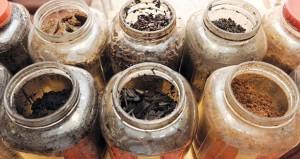 البخور .. سلعة اقتصادية هامة وصناعة عمانية خالصة يستخدم في المناسبات والضيافة والتطييب