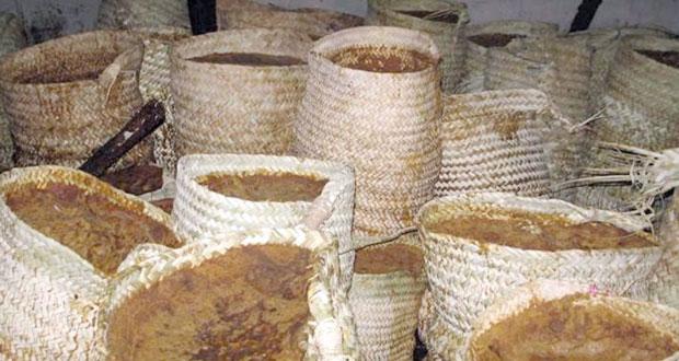 زراعة وتصنيع قصب السكر بولاية نزوى.. موروث قديم وذو مردود اقتصادي
