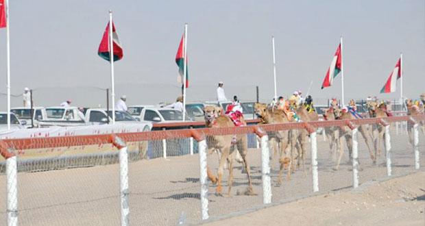انطلاق منافسات المهرجان الأهلي الخامس لسباقات الهجن بميدان الأبيض (افتتاح ) تفتتح أول أشواط البكار و(رياض ) يتصدر الجعدان ويحصدان مجسم خارطة عمان