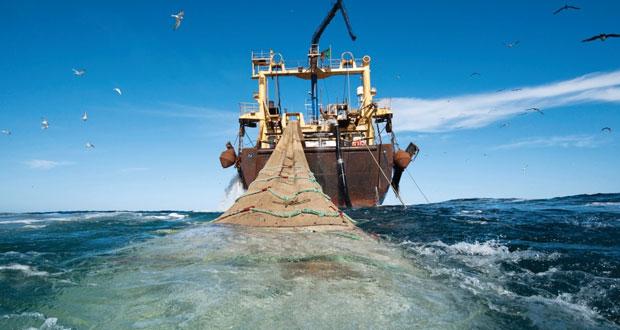 الفاو: محيطات كوكب الأرض إذا ما أديرت على نحو مستدام فسوف تنهض بدور هام في توفير فرص العمل وإشباع العالم