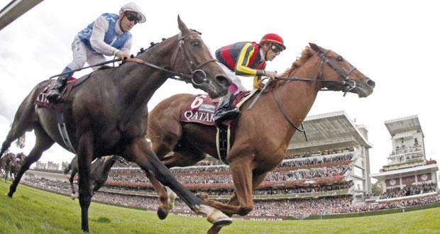 الإمارات تنظم مؤتمرا عالميا بلندن لحماية الخيول العربية