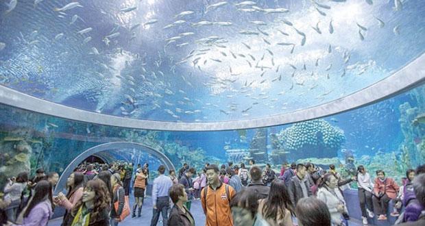 الصين تفتتح أكبر متحف مائي في العالم