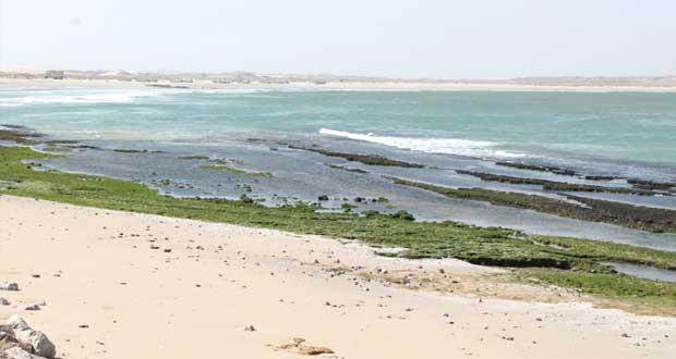 """""""شواطئ جعلان"""" تبحث عن خدمات سياحية"""