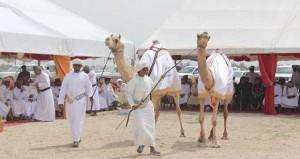 ختام رائع لفعاليات مهرجان خريف ظفار للمزاينة والمحالبة الثاني