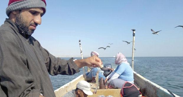 89.8 مليون ريال إجمالي قيمة الصيد الحرفي في السلطنة بنهاية النصف الأول من العام الحالي