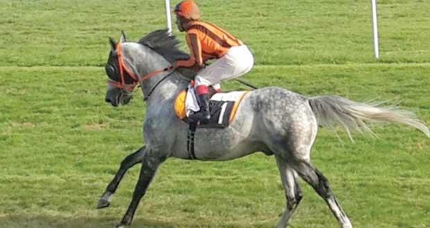 الحصان رداد ينتزع المركز الأول في سباق الخيول العربية بمدينة داكس الفرنسية