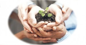 70% من المشاركين يعتبرون مشاركة مؤسسات القطاع الخاص في تحقيق مفهوم المسؤولية الاجتماعية ضعيفة