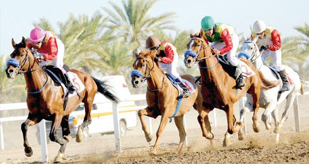 انطلاق فعاليات السباق الثامن للخيول بمضمار الرحبة بولاية بركاء