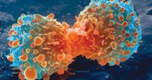 الحظ السييء المسبب الأول للسرطان