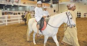 افتتاح المعرض الدولي الرابع للخيل والإبل والتراث ( أصايل عمانية ) .. بعد غد
