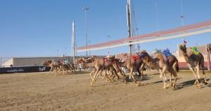 تواصل منافسات مهرجان الأمير (الوالد ) لسباق الهجن بالشحانية بدولة قطر
