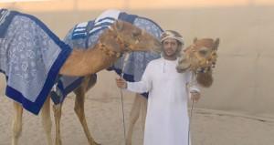 إسدال الستار على مهرجان الأمير (الوالد) بقطر