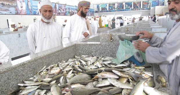 1.9% ارتفاعا في إجمالي كمية الأسماك المنزلة في السلطنة حتى نهاية 2014