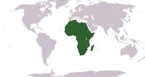 القارة الأفريقية.. ثروات وأزمات وسباق دولي محموم