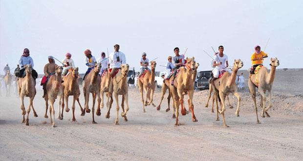 تنظيم سباق التحمل والقدرة بميدان العدابة بولاية ادم