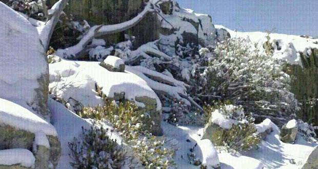 انخفاض درجه الحرارة وتساقط الثلوج على سفوح الجبل الأخضر