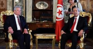 تونس: الجيش يفكك ألغاما زرعها مسلحون في جبل السلوم