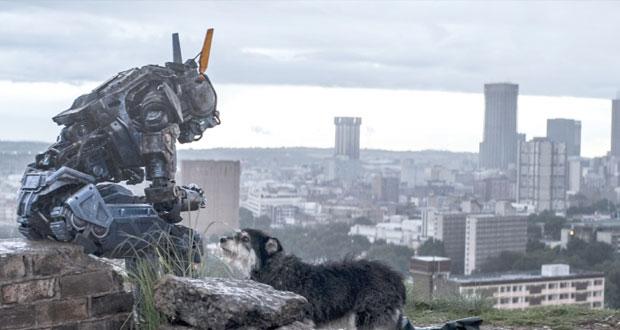 شابي .. الروبوت الحنون في عالم مجنون