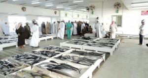 انخفاض أسعار الأسماك في عدد من الأسواق المحلية مارس الماضي