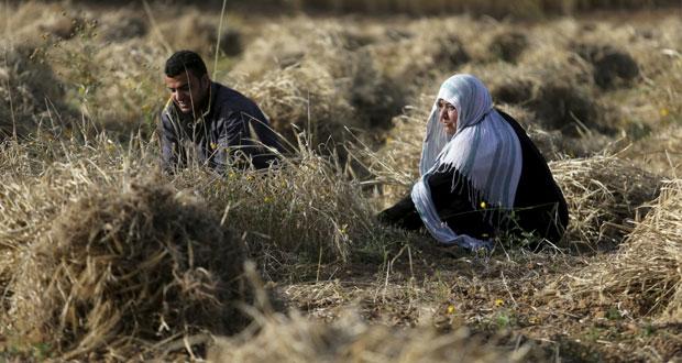 إضراب بالداخل الفلسطيني رفضا لهدم المنازل .. وآليات الاحتلال تواصل التدمير