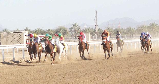5 أشواط من الإثارة في ختام سباق الخيول بالرحبة