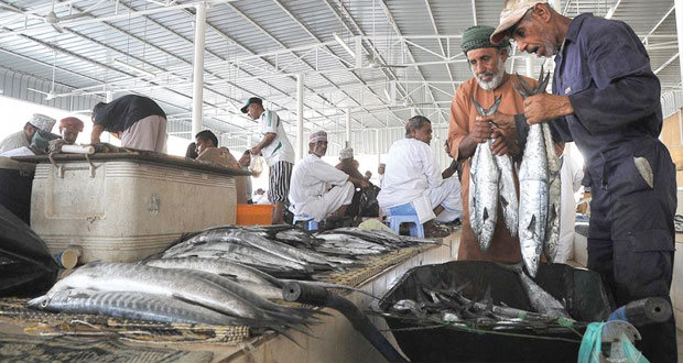 أكثر من 59 ألف طن أسماك منزلة بالسلطنة خلال الربع الأول من العام