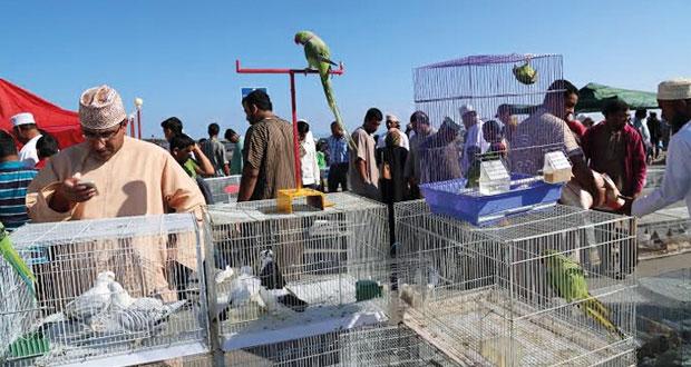هواة وبائعو الحيوانات الأليفة وطيور الزينة يطالبون بإنشاء سوق متخصص لعرضها وبيعها بالسيب