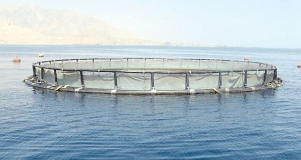 12 الجاري .. السلطنة تستضيف الاجتماع الـ 8 للهيئة الإقليمية لمصائد الأسماك (الريكوفي)