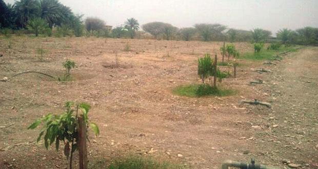 """""""التنمية الزراعية"""" بشناص توقع عقودا لتنفيذ نظام الري الحديث لـ ١٦ مزرعة"""