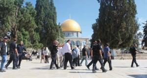المرابطون في (الأقصى) يتصدون لمحاولة قطعان المستوطنين اقتحام المسجد