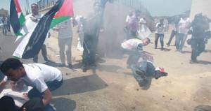 الفلسطينيون يعكفون على صياغة الدستور و(الحكماء) يوصون بانتخابات