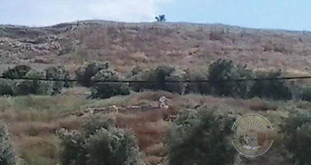 تل دوثان في فلسطين .. أهمية تاريخية ودينية