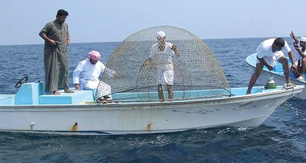 القطاع السمكي في مسندم .. أهمية اقتصادية متجددة واستثمارات متعددة
