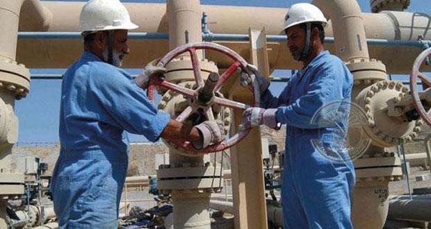 أكثر من 204.5 ألف عماني بالقطاع الخاص بنهاية مايو