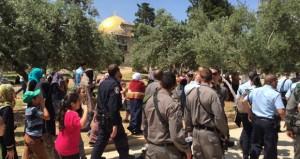 عناصر من شرطة الاحتلال وعصابات المستوطنين ينتهكون (الأقصى)
