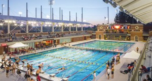 فراشات وتماسيح 12 دولة عربية على موعد مع مسبح يتانجسى الأوليمبى بكاليفورنيا