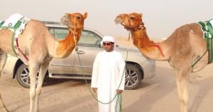 المضمر محمود الوهيبي ينضم للتضمير والتدريب بعزبة هجن (الرئاسة ) بالإمارات