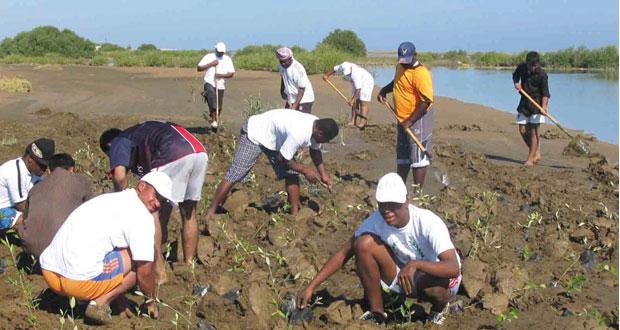 """""""البيئة والشؤون المناخية"""" تنفذ برامج الاستراتيجية الوطنية لحماية البيئة في مختلف محافظات السلطنة"""