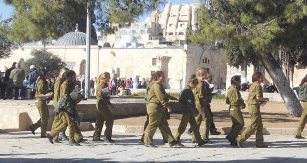 عشرات المستوطنين يدنسون باحات الأقصى .. والاحتلال يدفع بمجنداته لقمع المرابطات