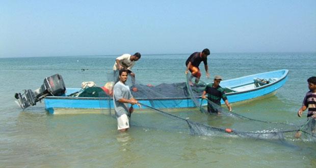 تقرير اقتصادي: الإرشاد السمكي .. دور محوري في نقل المعارف ومهارات العمل للصيادين