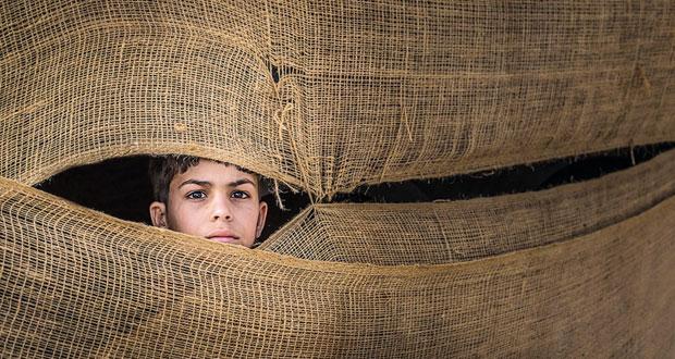 جمعية التصوير الضوئي تحصد ثماني جوائز جديدة في البينالي الدولي للشباب