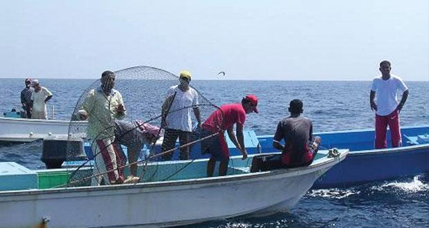 الصيد الحرفي: أكثر من 110 آلاف طن كمية الأسماك المنزلة حتى يونيو الماضي