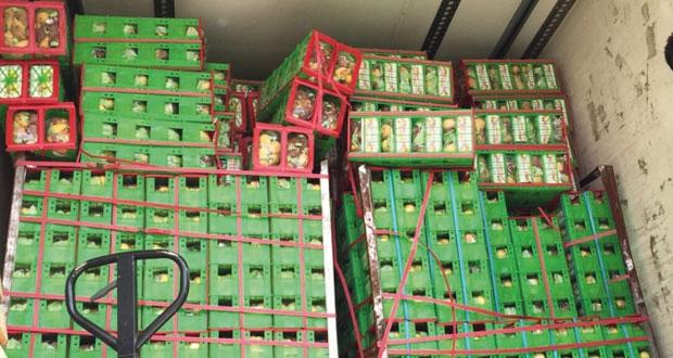 إتلاف (54236) كيلوجراما من الخضراوات والفواكه بسوق الموالح